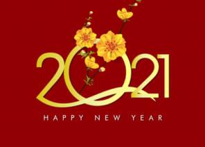 Thiệp chúc mừng năm mới 2021 - 010