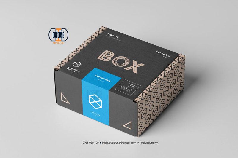Hộp carton 01 màu